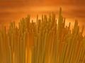 Spaghetti Skyline