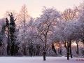 Winterstimmung auf dem Kaiserberg