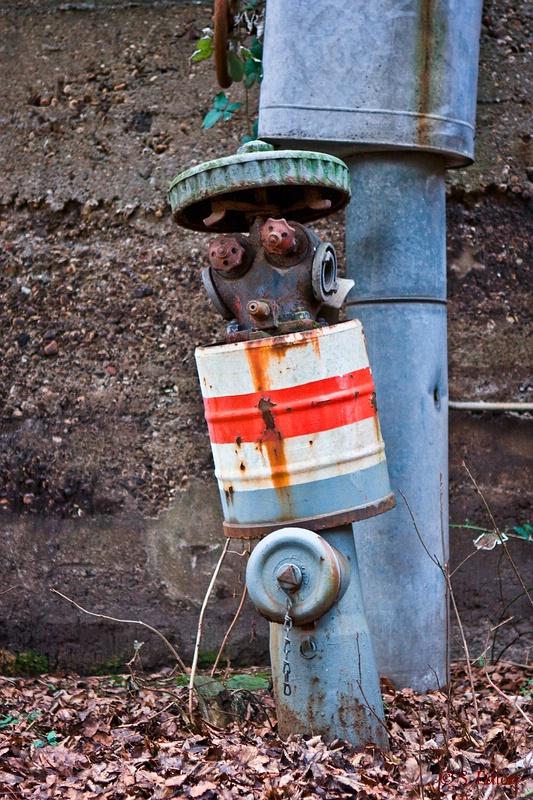 Der freundliche Hydrant